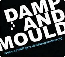 Damp and Mould